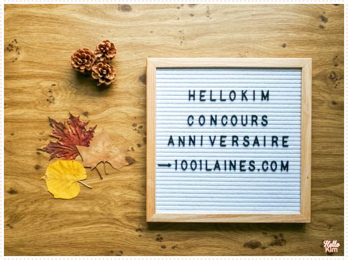 Concours 1001laines.com