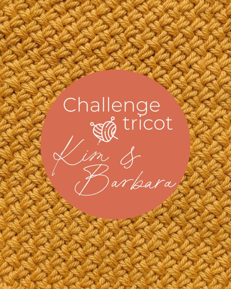 Point de vannerie, Challenge Tricot