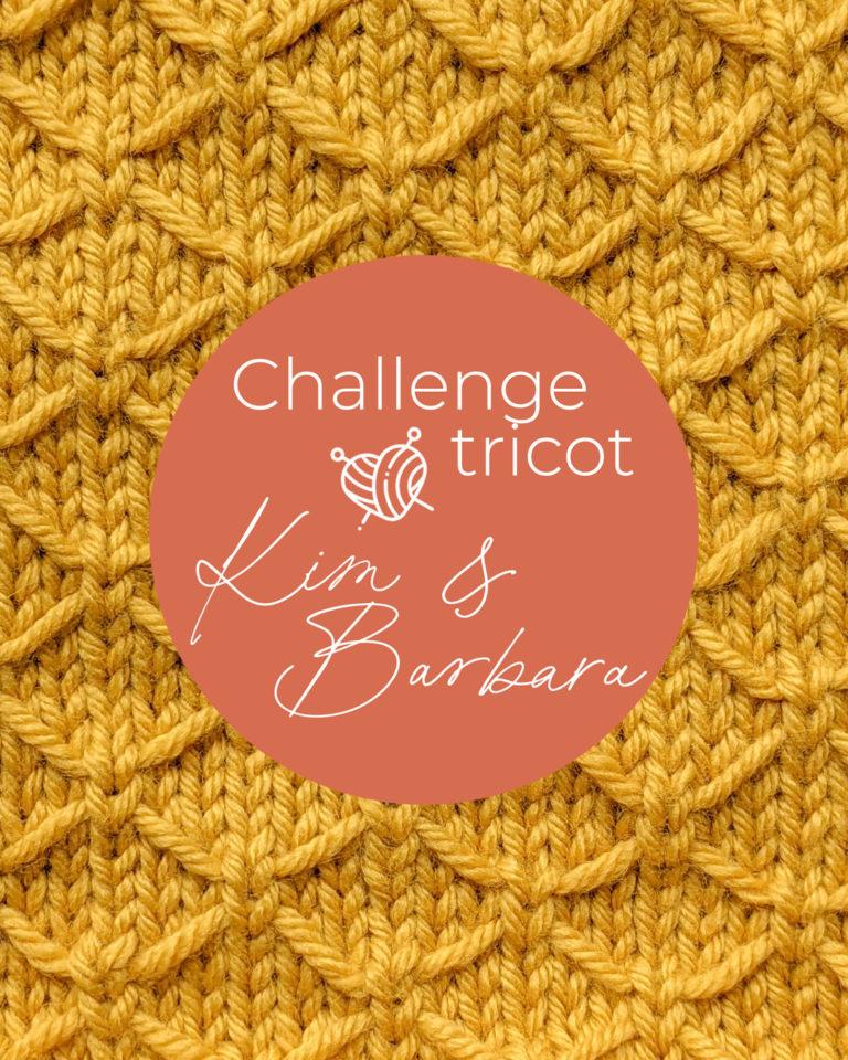 Point de treillis, Challenge Tricot