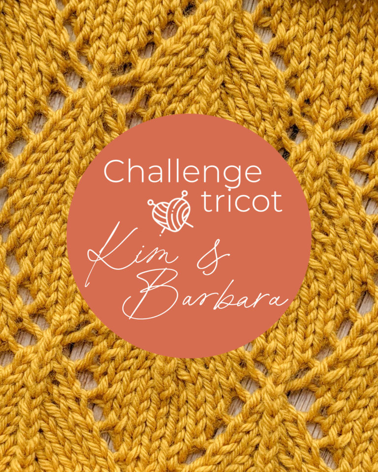 Motif feuille, Challenge Tricot
