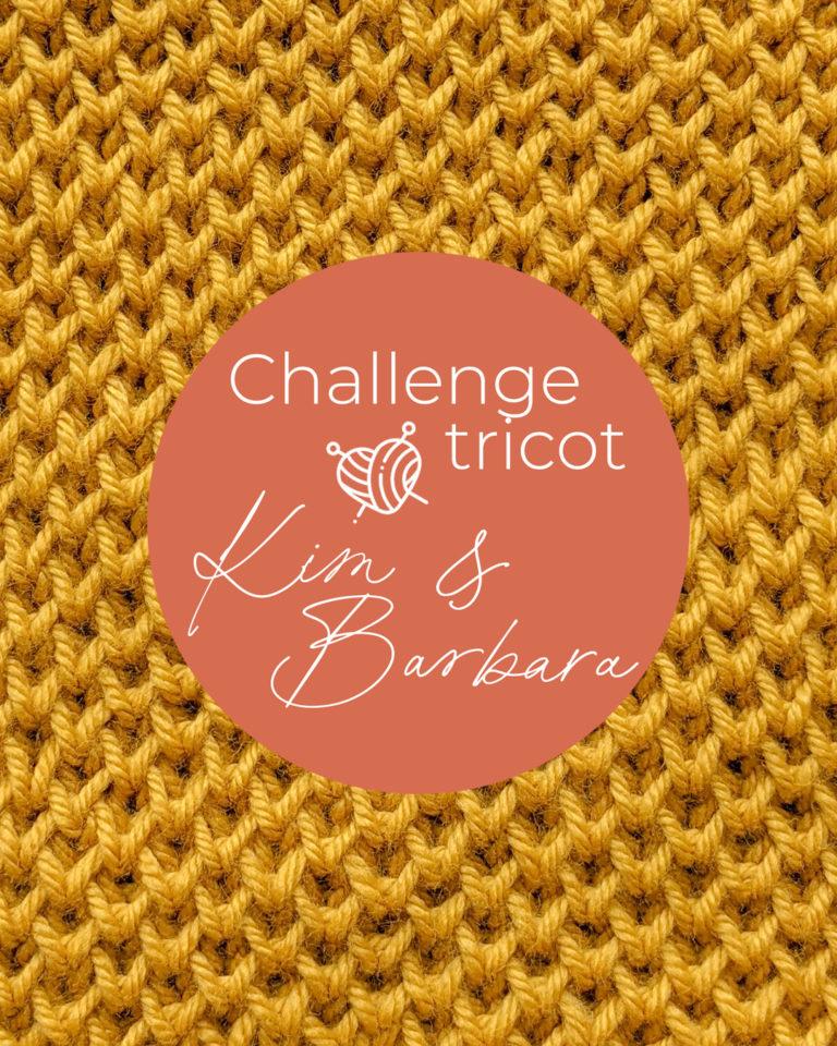 Point d'alvéoles, Challenge Tricot