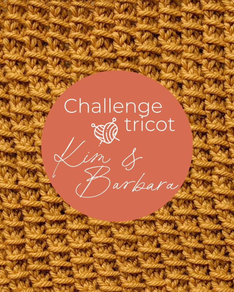 Point de bambou, Challenge Tricot