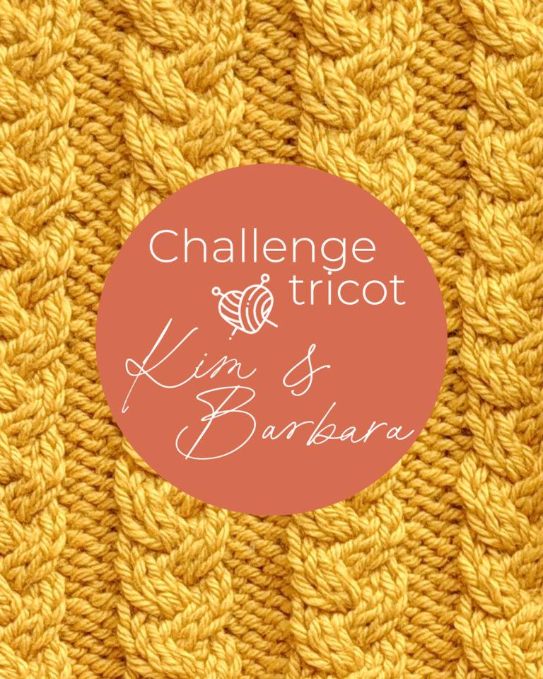 Torsades tressées, Challenge Tricot