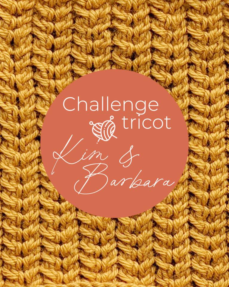 Point d'épine, Challenge Tricot