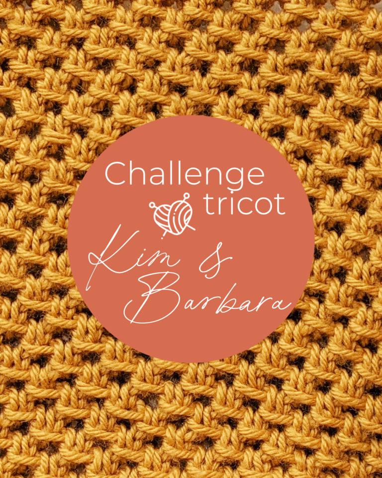 Point résille, Challenge Tricot