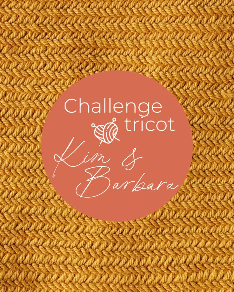 Point arête de hareng, Challenge Tricot