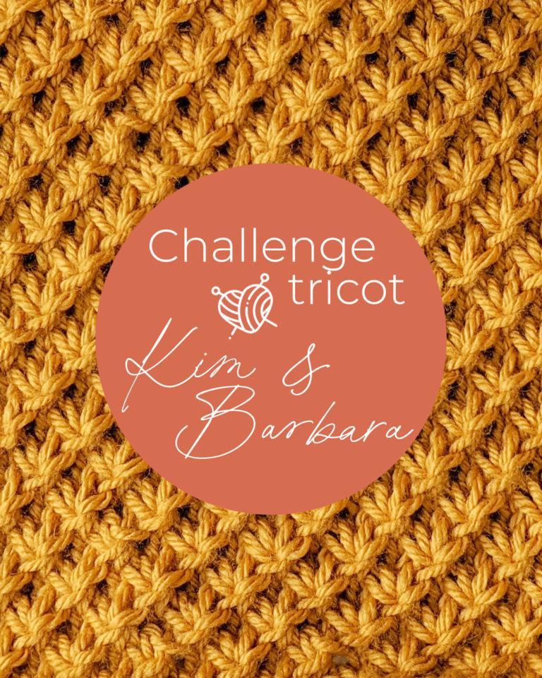 Point d'étoile, Challenge Tricot