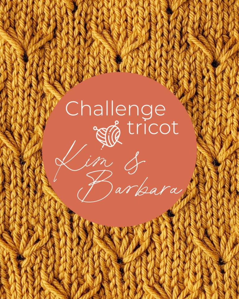 Point de pissenlit, Challenge Tricot