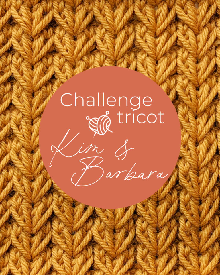 Point de Joli coeur, Challenge Tricot