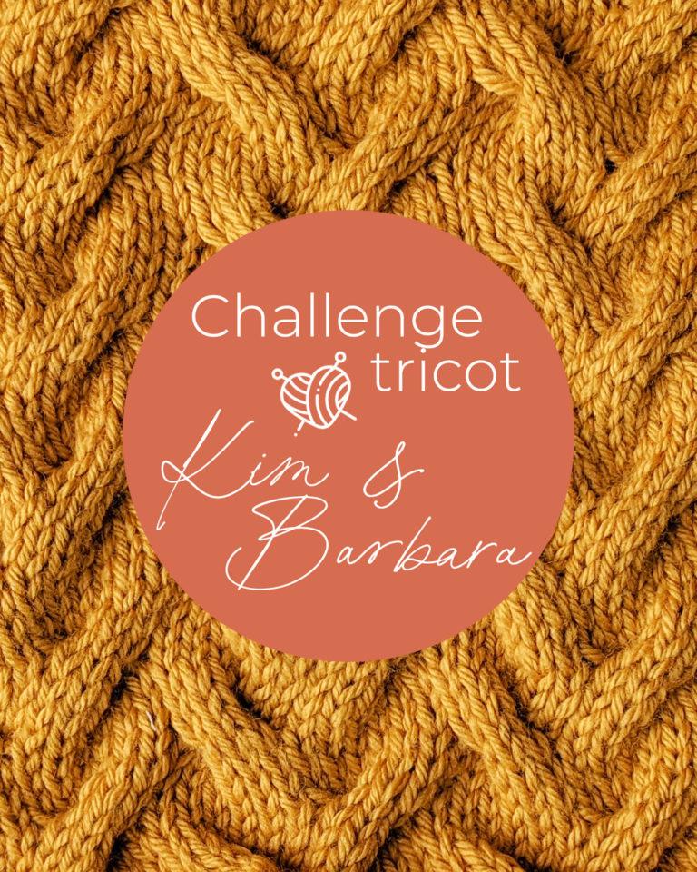Point Vent de sable, Challenge Tricot